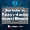 See Asterisk Password using Inspect Element