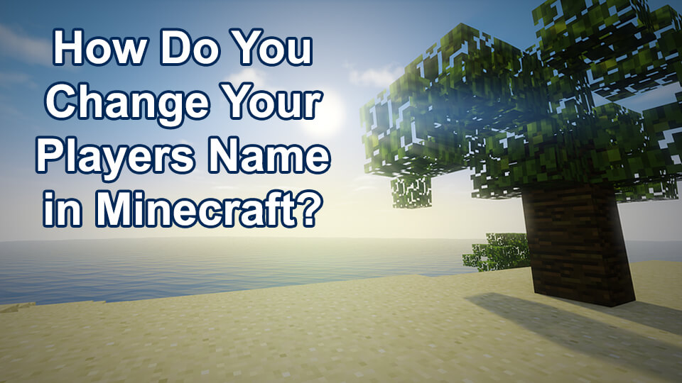 How To Change Player Name in Minecraft? - Tricks N Tech