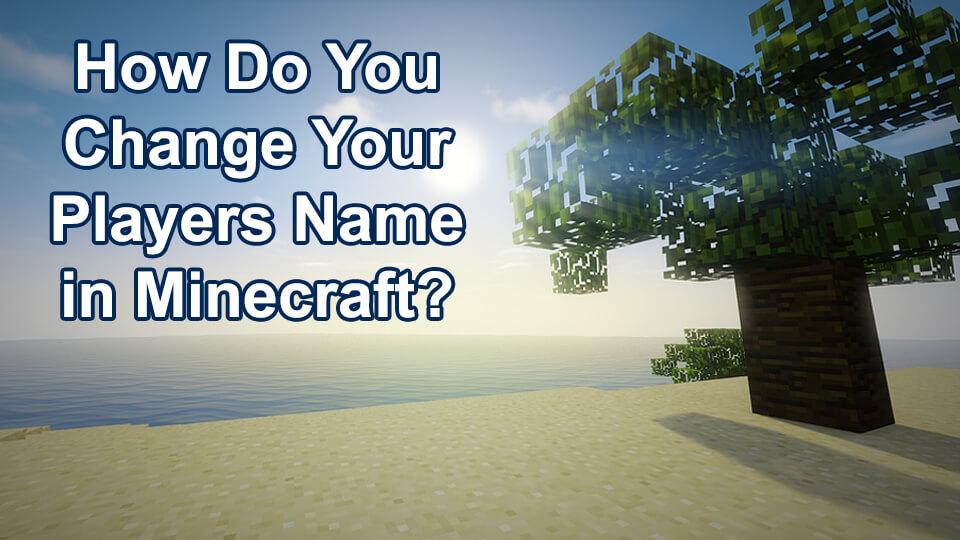 Change PlayersName inMinecraft