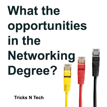 Opportunities in the Networking Degree